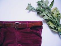 I pantaloni degli uomini di Borgogna del velluto a coste e mazzo verde dell'alloro su fondo bianco Fotografie Stock