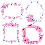 I papaveri rosa dell'acquerello ed i rami floreali incorniciano la raccolta dei confini su un fondo bianco Immagine Stock Libera da Diritti