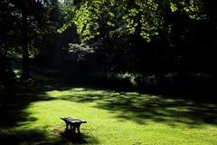 I parken Royaltyfria Foton