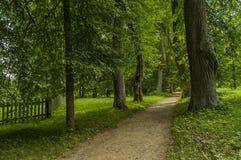 I parkera av den Mikhailovskoye tillståndsmuseum-reserven Ryssland royaltyfria foton