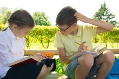 I parkera, i den nya luften, skolbarn gör deras läxa, kikar skrapar pojken flickans beslut och hans huvud royaltyfri foto