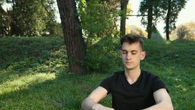 I parkera en man andas i de rena tr?na och ny luft Fritt och ?ppna utrymmen, st?llen av meditationen och avkoppling lager videofilmer