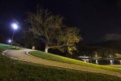 I parkera på natten Royaltyfria Bilder