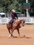 I partecipanti ai concorsi equestri eseguono su un'azienda agricola del cavallo Fotografie Stock Libere da Diritti