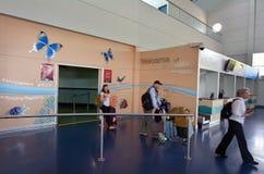 I passeggeri arrivano nell'aeroporto Queensland Australia dei cairn Immagine Stock