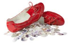 I pattini piani ed i seashells di balletto rosso della signora hanno isolato Immagini Stock Libere da Diritti