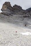 I pendii delle alpi dello svizzero di Eiger Immagine Stock