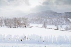 I pendii delle montagne di Caucaso in sole della nuvola Fotografie Stock Libere da Diritti