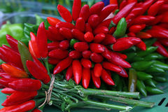 I peperoncini caldi rossi e verdi si chiudono su Fotografie Stock Libere da Diritti