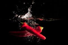 I peperoncini rossi rossi innaffiano la spruzzata Immagini Stock