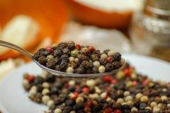 I peperoni colorati aromatizzano la miscela in cucchiaio e sul piccolo piatto ceramico fotografia stock
