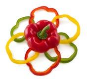 I peperoni dolci affettati organizzano nella figura del fiore. Fotografia Stock