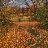 I percorsi dell'autunno Immagini Stock Libere da Diritti