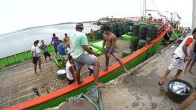 I pescatori commerciali che trasportano il fermo pescano da conservazione frigorifera della nave a bordo video d archivio