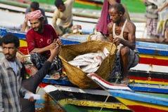 I pescatori scaricano il fermo del giorno, Al Hudaydah, Yemen Immagini Stock