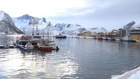 I pescherecci nell'isola di Husoy harbor in Norvegia del Nord video d archivio
