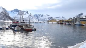 I pescherecci nell'isola di Husoy harbor in Norvegia del Nord stock footage
