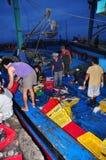 I pesci sono raccolti ed ordinati nei canestri prima del carico sul camion al porto marittimo di Hon Ro, città di Nha Trang Fotografia Stock