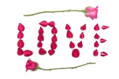 I petali della rosa sono sistemati nell'amore di parola Fotografie Stock Libere da Diritti