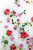 I petali e le foglie del fiore della miscela nel bagno del latte, nel fondo o nella struttura per il massaggio e la stazione term immagini stock