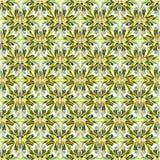 I petali neri ed arancio di verde giallo del fiore su un fondo bianco vector l'illustrazione Fotografie Stock Libere da Diritti