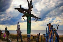 I pezzi colorati di tronchi di albero hanno fuso a terra sulla spiaggia Immagine Stock Libera da Diritti