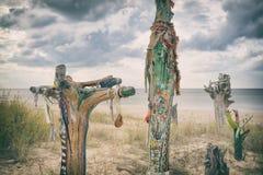 I pezzi colorati di tronchi di albero hanno fuso a terra sulla spiaggia baltica Fotografia Stock