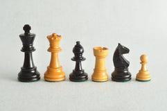 I pezzi degli scacchi differenti Fotografia Stock