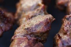 I pezzi succosi freschi eccellenti di frittura di kebab della carne su carbone grigliano Fotografie Stock Libere da Diritti