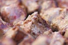 I pezzi succosi freschi eccellenti di frittura di kebab della carne su carbone grigliano Immagine Stock