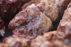 I pezzi succosi freschi eccellenti di frittura di kebab della carne su carbone grigliano Fotografia Stock Libera da Diritti