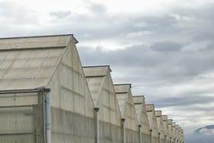 I picchi delle serre leggermente costruite discendono nei precedenti collinosi e nuvolosi Fotografie Stock Libere da Diritti