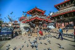 I piccioni volano nel quadrato di Durbar, Nepal fotografia stock