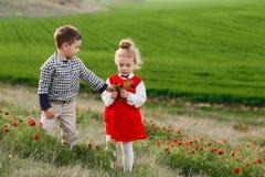 I piccoli bambini stanno camminando in un campo con i fiori rossi immagine stock