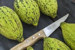 I piccoli meloni acerbi pieni, melone crudo rappresenta, tagliano un piccolo melone con un coltello, mangiano un melone acerbo, p Fotografie Stock Libere da Diritti