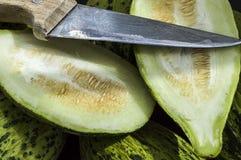 I piccoli meloni acerbi pieni, melone crudo rappresenta, tagliano un piccolo melone con un coltello, mangiano un melone acerbo, p Fotografia Stock