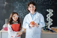 I piccoli ricercatori allegri che lavorano alla scienza proiettano alla scuola Fotografie Stock Libere da Diritti