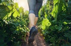 I piedi del corridore nelle montagne si chiudono su Fotografia Stock Libera da Diritti