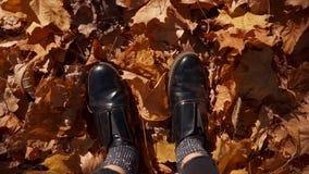I piedi della donna in mucchio delle foglie video d archivio