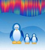 I pinguini Fotografie Stock
