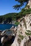 I pini sull'rocce al mare di mattina si accendono Fotografia Stock