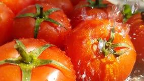 I pomodori cade giri lenti di verdure naturali dell'estate sana dell'acqua di cadute del gocciolamento stock footage