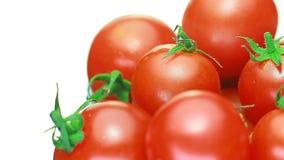 I pomodori ciliegia succosi girano concetto del pomodoro genuino e fresco Rosso archivi video