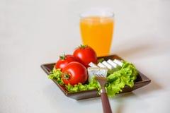 I pomodori e le fette del formaggio si trovano su uno strato di insalata fresca in un piatto Fotografia Stock Libera da Diritti
