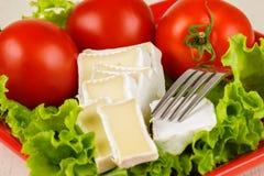 I pomodori e le fette del formaggio si trovano su uno strato di insalata fresca in un piatto Fotografie Stock