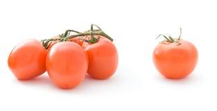 I pomodori hanno isolato fotografia stock