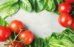 I pomodori maturi freschi su lattuga va sulla tavola Immagini Stock