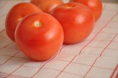 I pomodori rossi Fotografia Stock Libera da Diritti