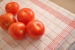 I pomodori rossi Immagine Stock Libera da Diritti
