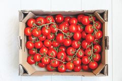 I pomodori rossi sui rami verdi si trovano in scatola Fotografia Stock Libera da Diritti